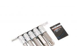 Набор головок-бит Torx 6-лучевых, 5 пр.(Т60,Т70,Т80,Т90,Т100, L-100мм) 1/2», на планке